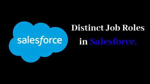 Distinct Job Roles In Salesforce